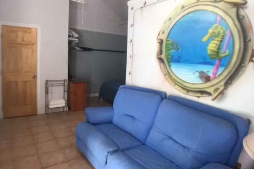 diveshopcouch